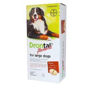 Drontal Large Dog Tabs (singles)