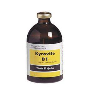 Kyrovite B1 100ml